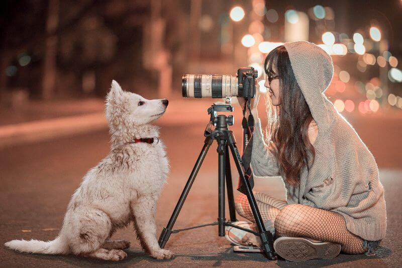 ブログで安全に写真・画像を使う方法
